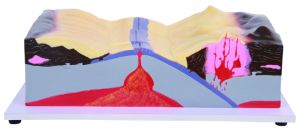Plate Collision and Volcano Formation Model pictures & photos