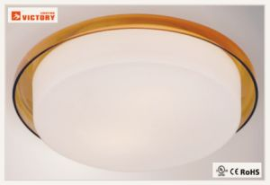 Waterproof Indoor Modern Simple Round LED 5W Ceiling Light with Opal Glass pictures & photos