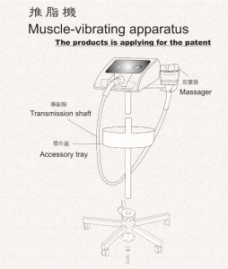Electrical Massage Muscle-Vibrating Slim Apparatus 2008b pictures & photos