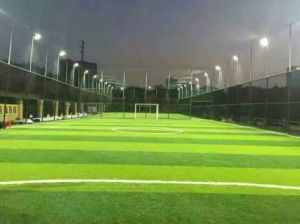 LED Stadium Illumination for Sport 400W 500W 600W pictures & photos