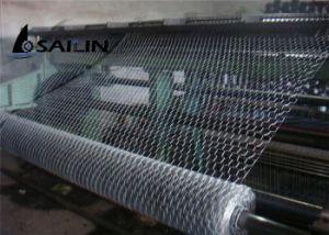 Sailin Hexagonal Wire Mesh for Chicken Rabbit pictures & photos