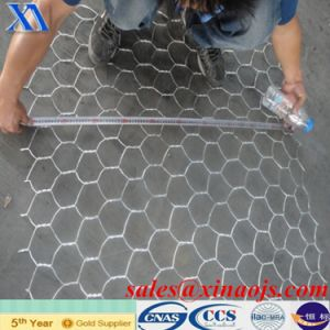 Hot Sale Galvanized Gabion Mesh (XA-GM6) pictures & photos