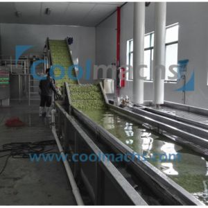 Quick Frozen Production Line for Vegetables and Fruits pictures & photos
