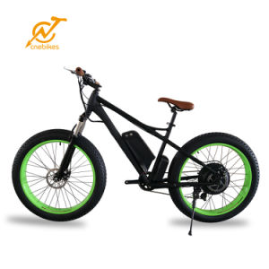 7 Speed 1000W Chinese Green City Electric Fat Bike with LCD Display pictures & photos