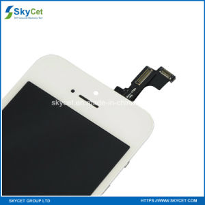 Original Quality Mobile Phone LCD for iPhone Se/5s pictures & photos