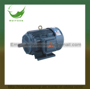 Y2 Series 6 Poles 7.5kw 10HP 3 Phase Iron Cast Copper Wire AC Electric Motor (Y2-160M-6) pictures & photos