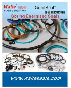 Gfd Standard Type 1100 PTFE Radial Seals pictures & photos