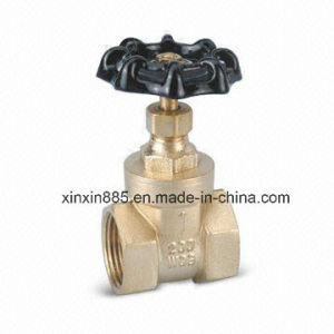 Brass Gate Valve (ITB301-1) pictures & photos