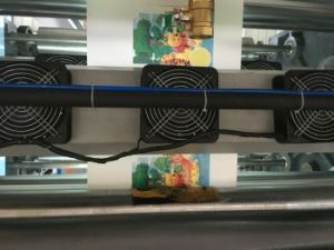 4 Colors Water Based Ink Printing Machine for Paper Roll (DC-YT41000) pictures & photos