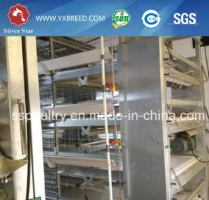 4 Tiers Chicken Egg Cages with Automatic System pictures & photos
