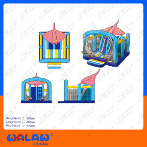 Hot Sale The Latest Commercial Inflatable Bouncer Slide pictures & photos