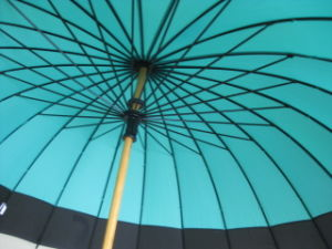 "23""X24k Manual Open Wood Shaft Pongee Straight Umbrella (GU035) pictures & photos"