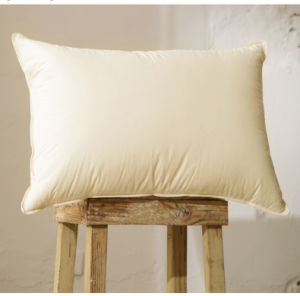 Teflon Water Prooft White Goose Down Pillow for Hotel pictures & photos