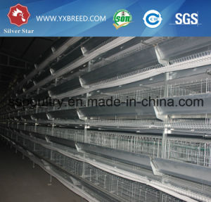 Poultry Equipment Chicken Cages for Tanzania pictures & photos