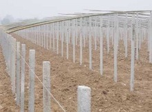 Precast Concrete Fence/Fencing Poles Forming Machine Equipment pictures & photos