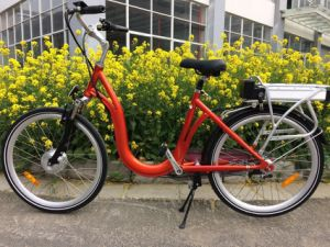 European Standard Electric City Bicycle with Rear Rack Lithium Battery pictures & photos