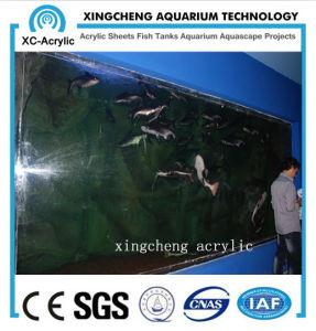 Large Marine Aquarium Sea Park Price pictures & photos