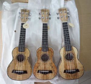 Aiersi Mini Guitar 24 Inch Concert Ukelele Musical Instruments pictures & photos