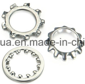 Toothed Lock Washer (DIN67987&J) (Factory) pictures & photos