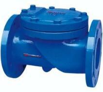 Check Valve pictures & photos