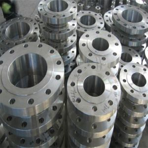 Flange for Ship, Pressure Vessel, Sewage Treatment pictures & photos