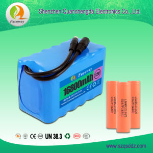 (QSD-168) 16800mAh Multiple Strings and Parallel Lithium Ion Battery Pack pictures & photos