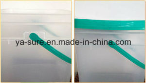 HDPE/PP Food Safe Clear Plastic Packaging Bucket 2L 5L 8L 15L 20L pictures & photos