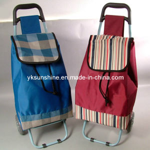 Supermarket Trolley Bag (XY-406D) pictures & photos