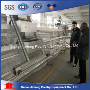 High Quality Factory Direct Sale Chicken Cage, Chicken Layer Cage System pictures & photos