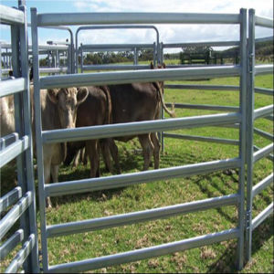 6rails Oval Tube Galvanized Livestock Sheep Corral Panels/Cattle Panels pictures & photos