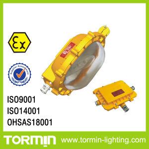 Hazardous Location LED Lamp