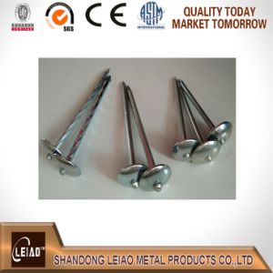 Galvanized Roofing Nails Factory in China pictures & photos