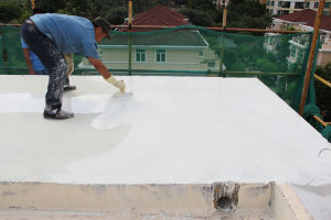 Js Waterproof Coating, Polymer Cement Waterproof Coating pictures & photos