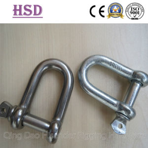 D Type Shackle, European Type, JIS Type, Ss316, Ss304, E. Galvanized pictures & photos