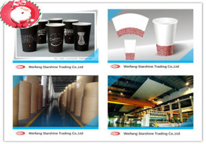 Superior PE Coated Paper for Making Delicate Paper Cups
