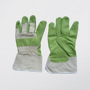 Green Vinyl Impregnated Work Gloves (2805) pictures & photos