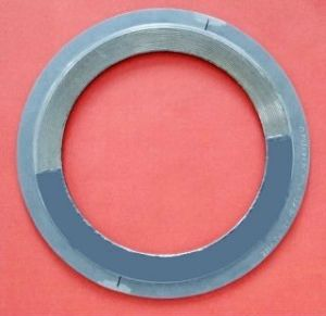 Metal Kammprofile Gasket (SUNWELL 1110) pictures & photos