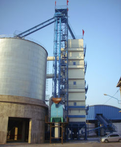 Quality China Grain Bucket Elevator pictures & photos
