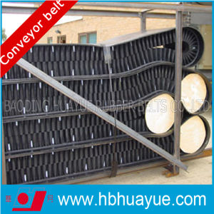 Ep/Nn Sidewall Rubber Belt (B400-2200) pictures & photos
