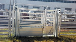 Australian Galvanized Cattle Panel Squeeze Crush pictures & photos