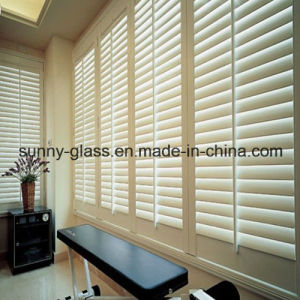 Louver Glass / Window Glass / Building Glass pictures & photos