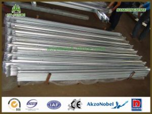 Hot Dipped Galvanized Palisade Fence pictures & photos