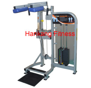 Body Building Eqiupment, Hammer Strength Standing Calf- (PT-513) pictures & photos