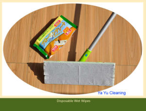 Flat Dry&Wet Wipe Mop (YYFM-003) pictures & photos
