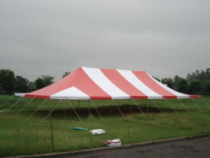 Lowest Price Peg/Pole Tent 7X12m pictures & photos