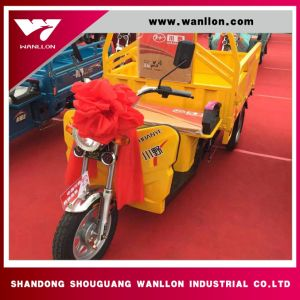 Yellow Color 48V Power Farm Use Electric Cargo Trike with 950*1300mm Large Loading pictures & photos