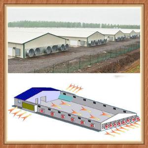 Super Herdsman Poultry Farm Construction pictures & photos