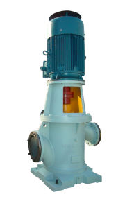 High Quality with Motor Vertical Gear Pump pictures & photos