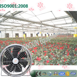 Hanging Type Energy Saving Cooling Fan for Flower Greenhouses