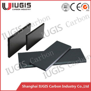 Good Price Carbon Vane for Pump China Supplier pictures & photos